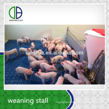Livestock Equipment Pig Weaning Stall Pig Pen