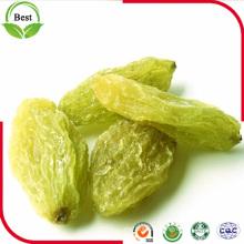 2016 neue Crop Xinjiang kernlose grüne Rosine