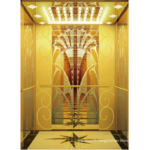 Passenger Elevator Lift High Quality Gold Mirror Etched Aksen Ty-K164