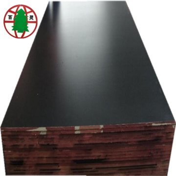 16 mm Black film faced plywood for construction