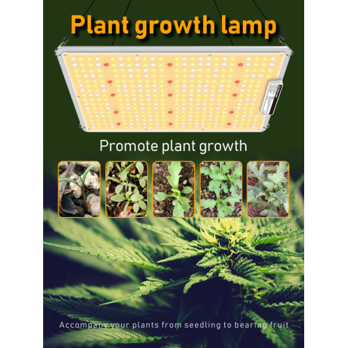 Wireless Remote Dimming Indoor LED Grow Lights