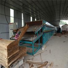 Secador de rodillo de chapa de eucalipto de pino de álamo