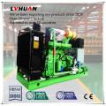 Gás natural do gerador de poder 50kw 50 hertz 400 V Genset