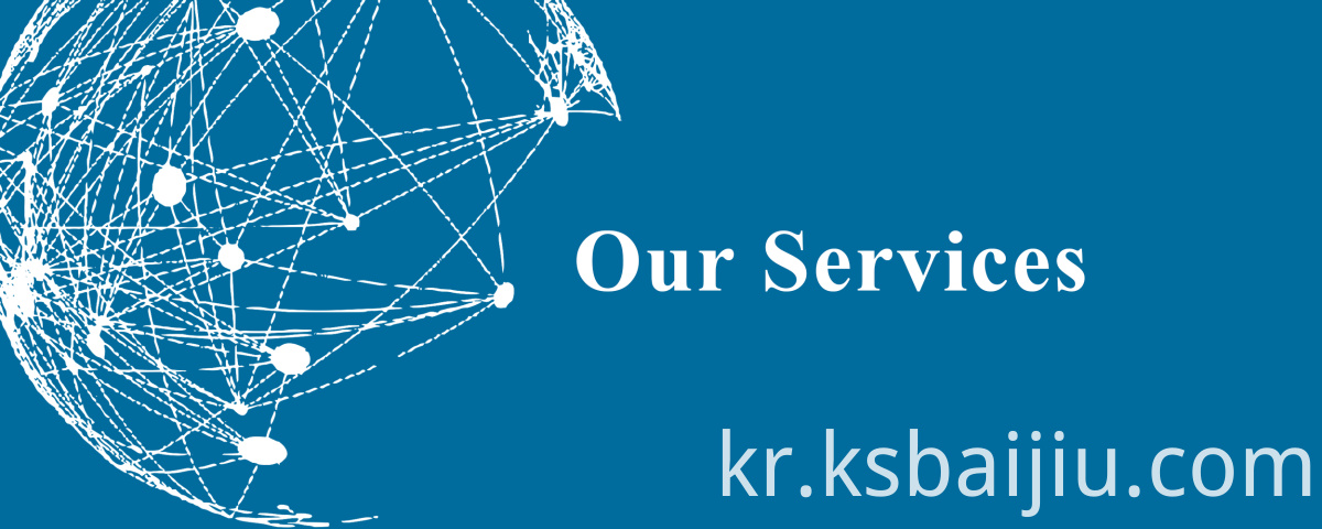 Our Services 1