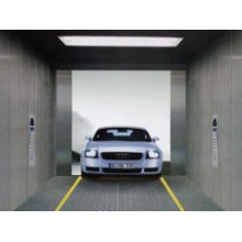Ascensor del coche de Shandong Fjzy Elevator Co., Ltd