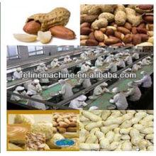 Linha de processamento de amendoim