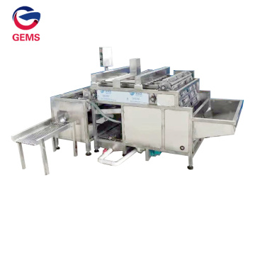 Linea Brown Eggs Boiling Cooling and Peeling Machines