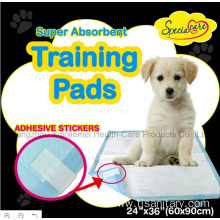 Animal Urine Wee Wee Training Pad