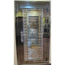 High-great stainess steel door