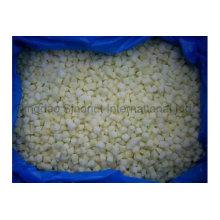 Cebolla congelada del nuevo cultivo congelado cortado en cuadritos (5 ~ 7m m)