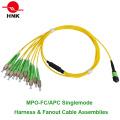 12-жильные кабельные сборки MPO FC / APC и кабельные сборки