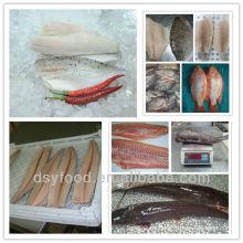 Arten von Fischfilets