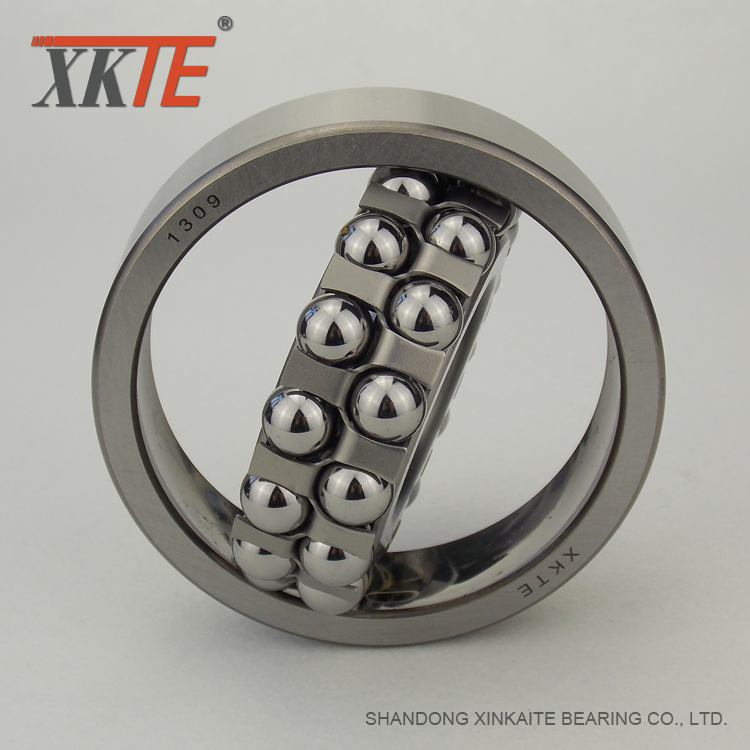Bearing 1309 For Drum Pulley