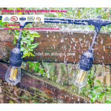 La cadena del patio al aire libre a prueba de mal tiempo SLT700 enciende el bulbo G60, negro, 48 '