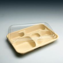 Plateau en plastique plats à emporter