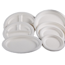 disposable oval shape paper sugarcan pulp takeaway box sugar cane food packaging fiber round clam noodle pizza plant