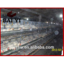 Commerical chicken brolier cage/ chicken baby cage