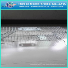 Small Metal Door Live Animal Cage Trap / Squirrel trap