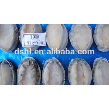 Gefrorene gekochte Abalone mit Schale