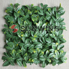 The best competitive price plastic small garden fence