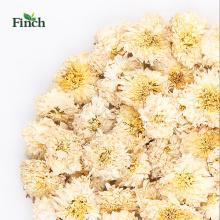 Finch recién llegado flor de desintoxicación té seco floristas crisantemo de Huang Shan