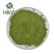 Poudre de matcha au thé vert Macha frais de qualité alimentaire