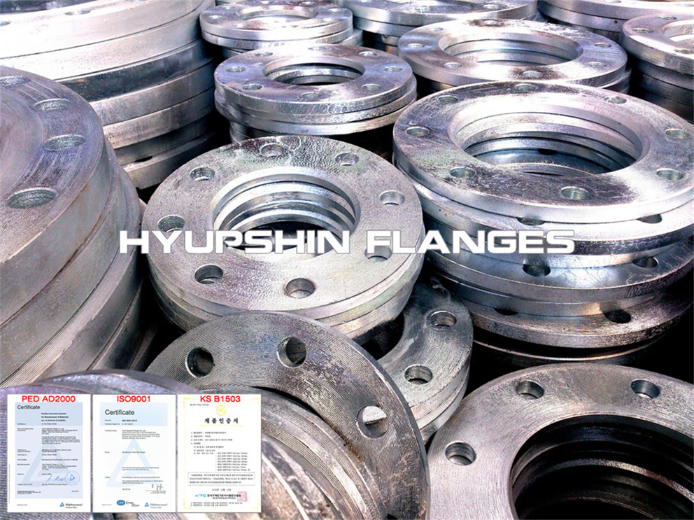 Hyupshin Flanges Sans1123 Backing Ring Hot Galvanized