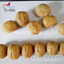 China Xinjiang Walnuts Supplier Wholesale High Qaulity Cheap Price Walnut with Shell