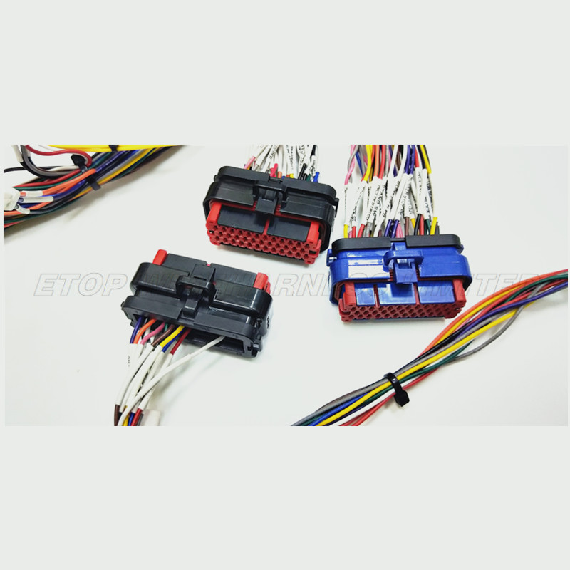 ECU Wire assembly