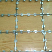 Good Quality Low Price Barbed Wire (TYC-049)