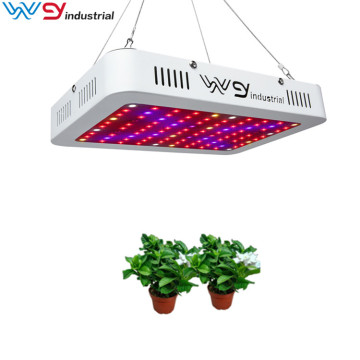 1000W led luces de cultivo home depot