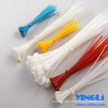 Attaches de câble de marqueur en nylon avec approbation RoHS
