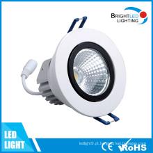 LED Down Light 12W CE & RoHS LED Downlight