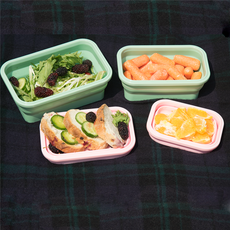 folding lunch box (11)