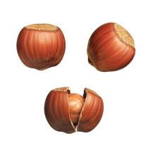 Лучшая цена Жареный лесной орех