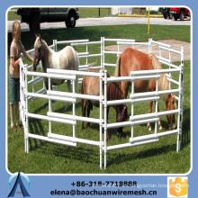 Personalizado de seguridad de inmersión caliente Galvanizar Caballo Panel de la cerca con el precio de fábrica