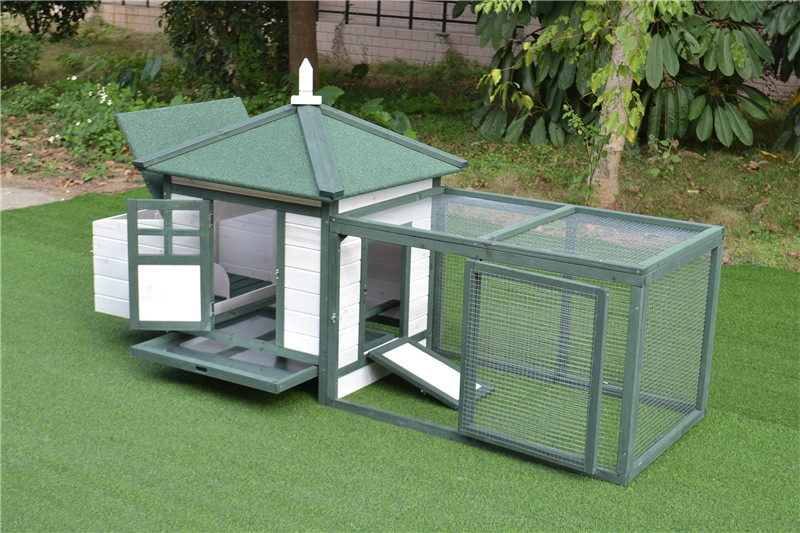 backyard chicken house