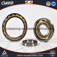 China Factory Produced Deep Groove Ball Bearings (6048/6048-2RS/6048M)
