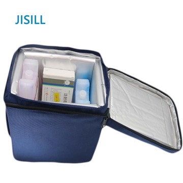Phasenpunkte PCM Ice Chest Pack