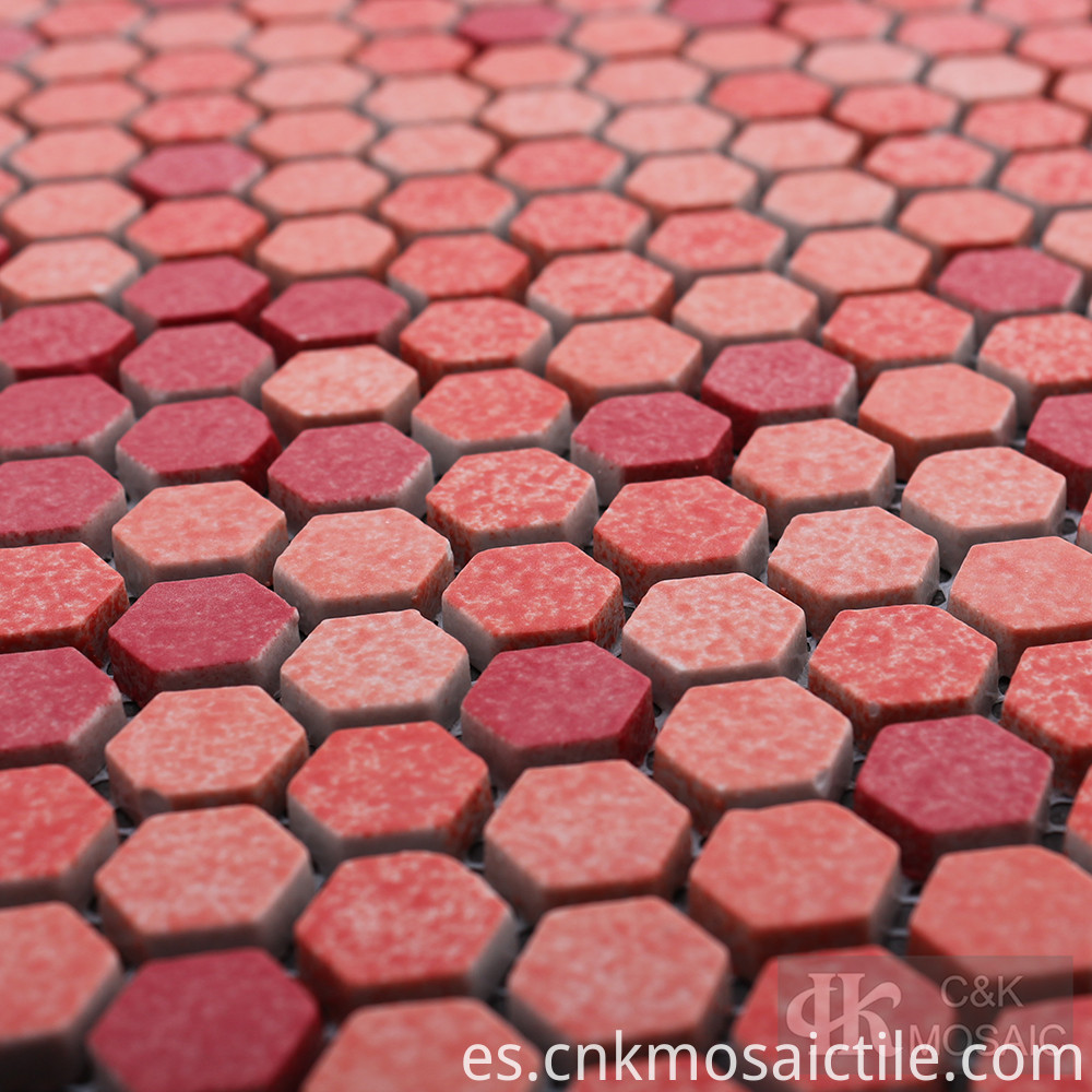 Red Glass Mosaics