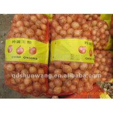 Fresh yellow onions 2012