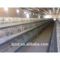 Cage de poulet de haute qualité en acier galvanisé - couche en U