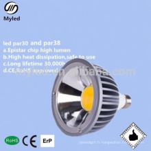 CE et Rohs approuvent les ampoules modulaires dimmable par38