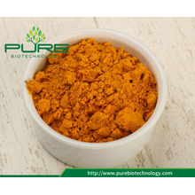 Pure+natural+organic+turmeric+curcumin+powder