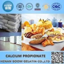 food additives for bread preservatives calcium propionate