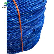 6-100mm PE/Polyethylene/PP/Polypropylene/Plastic/Fishing/Marine/Mooring/Twist/Twisted Danline Rope for Philippines