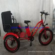 USA Popular Fat Tire E Trike Three 3 Wheel Passenger Electric Tricycle