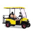 изготовленные на заказ части дизайна и цвета туристско-рекреационного назначения электрических машин