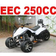 250CC que competía TRIKES PARA LA VENTA (MC-380)
