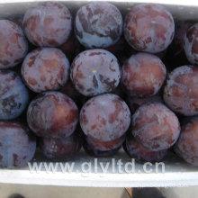 Chinese Fresh Sweet Black Plum